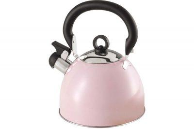 SK-1302 Stainless Steel Whistling Tea Kettle