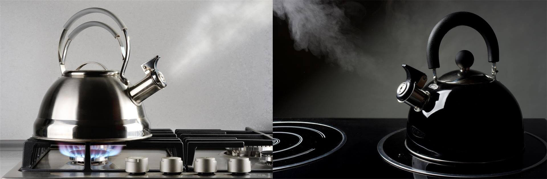 Stainless Steel Whistling Tea Kettle on Stovetop